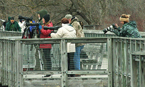 Do you have photos you want to share with the Huron-Clinton Metroparks? Click Here to Learn More
