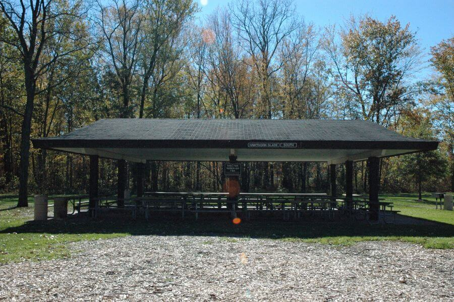 LH Hawthorn Glade South Shelter