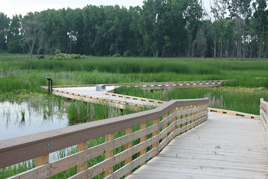 marsh-boardwalk
