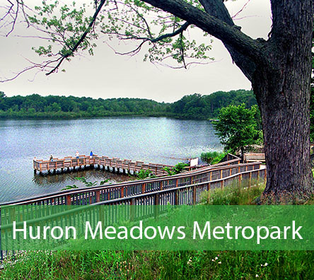 Huron Meadows Metropark