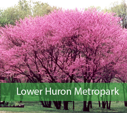 Lower Huron Metropark