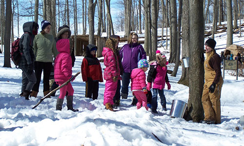 Click to learn more about upcoming Maple Sugaring programs!