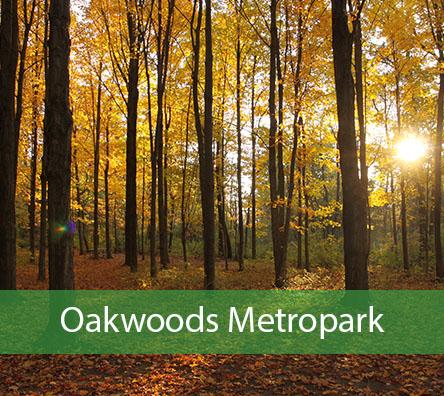 Oakwoods Metropark
