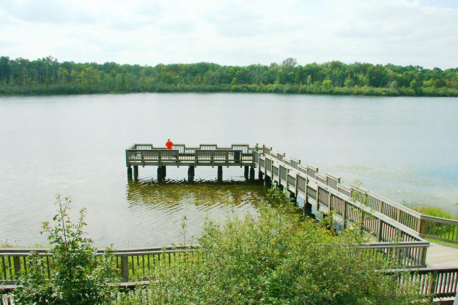 Huron Meadows FishingBrighton, MI