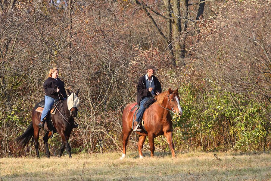 Oakwoods Equestrian TrailsRay, MI
